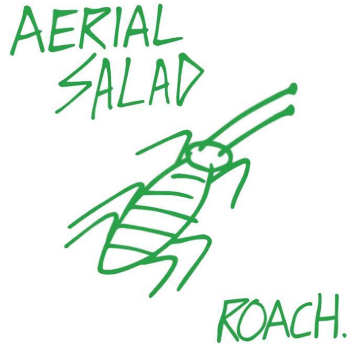 AERIAL SALAD.